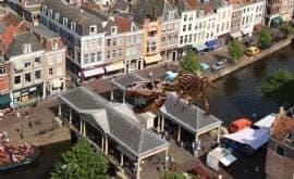 T. rex in Town in Leiden